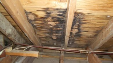 Photo of Roof Repair Tips For Fixing A Leaking Roof From Inside