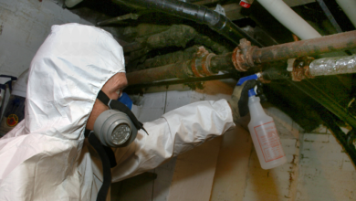 Photo of What to Look For From an Asbestos Removal Company