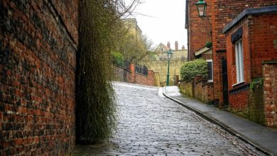 Photo of Cobbled Path: Paving the Old-Fashioned Way