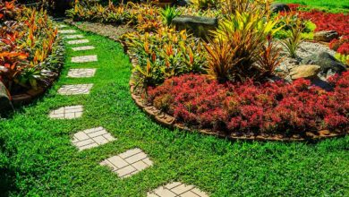 Photo of Benefits of Hiring a Home Garden Maintenance Services Provider in Singapore