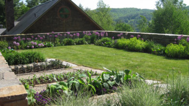 Photo of What Is the Secret Behind the Garden Soil in A Landscape?