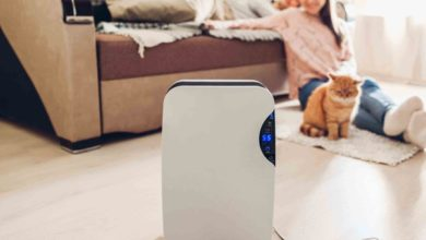 Photo of The Enticing Benefits of Using Air Purifiers